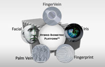 Biometric-Fingerprint-Palm-Vein-Iris-Facial-Technology